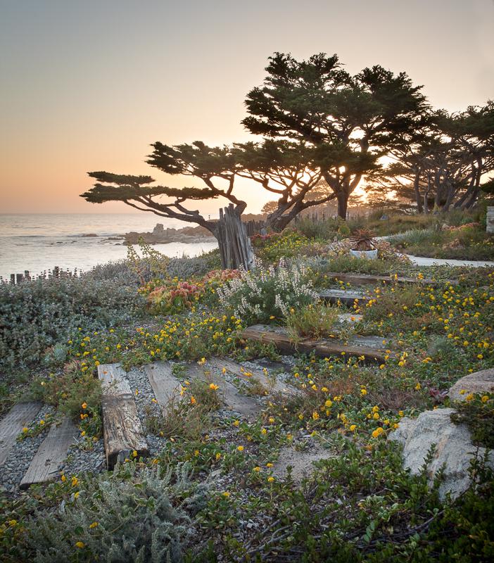 ©Jason Liske 'Native Coast'