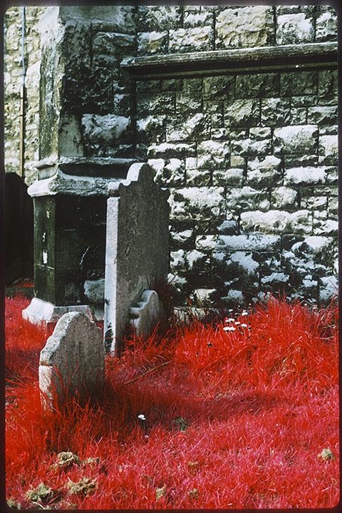 Churchyard, Bishops Park near Putney Bridge, infra red