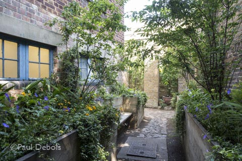 WC Garden @Vanguard Court, Chelsea Fringe project from 2013. Revisit in 2014 for the relaunch as Anna Rose Hughes' studio.