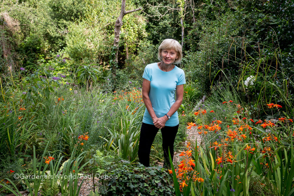 Pam Woodall, wildlife garden, Poole, Dorset