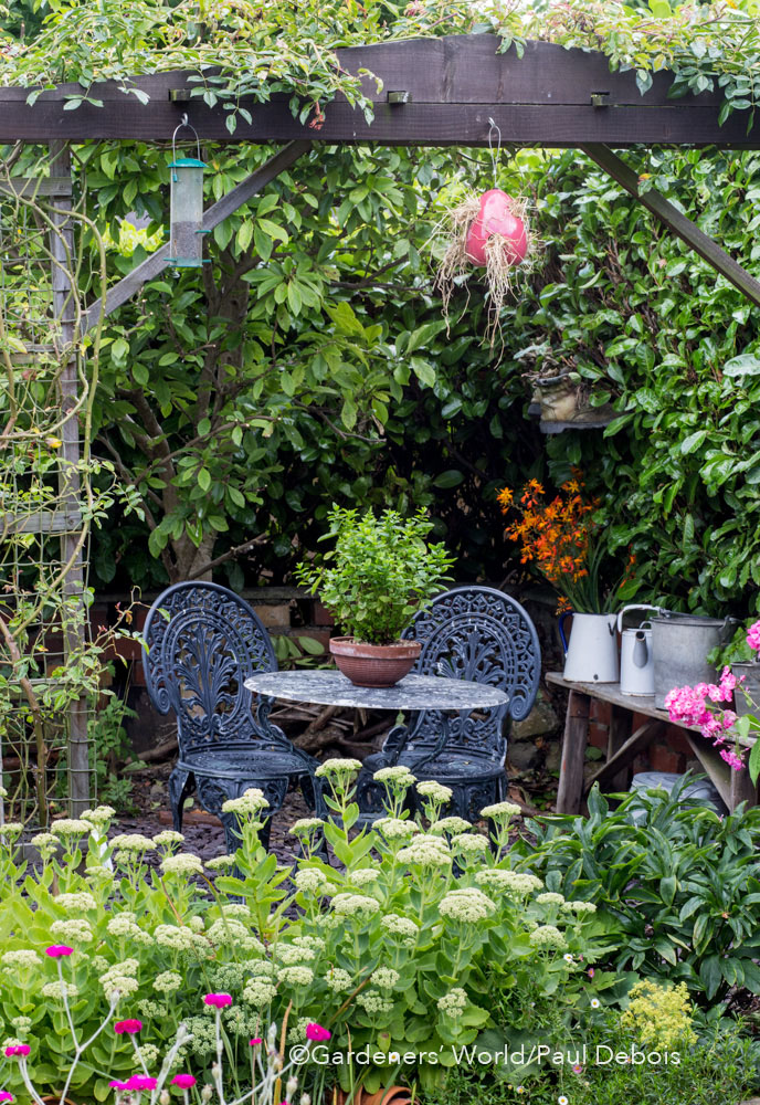 Garden of the year with gardeners world paul debois for Wish garden deep lung