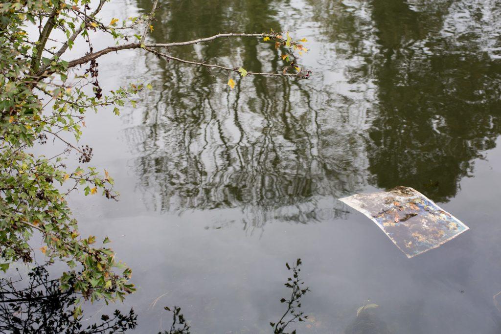 River Brent at Brentford, 6.11.14