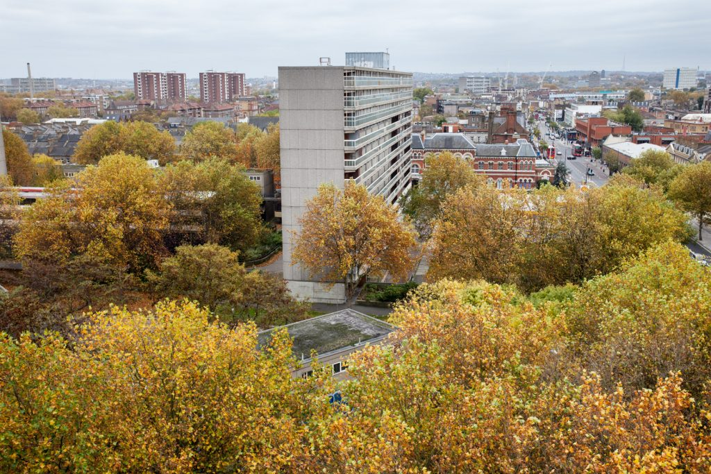 Urban Forest, Elephant and Castle